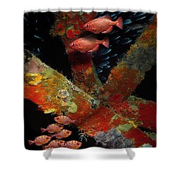 Red Fish On The Rhone Shower Curtain