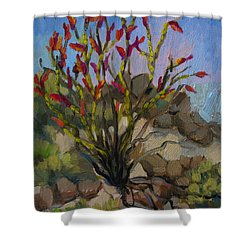 Red Flame Ocotillo 5 Shower Curtain