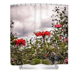 Red Flower Grey Sky Shower Curtain by Wayne King