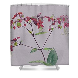 Red Flower Vine Shower Curtain