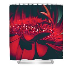 Red Flowers Parametric Shower Curtain by Sharon Mau