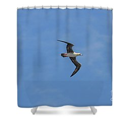 Shower Curtain featuring the digital art Red Footed Booby Bird 1 by Eva Kaufman