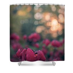 Burning Red II Shower Curtain