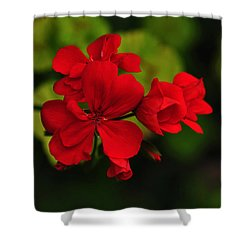 Red Geranium Shower Curtain