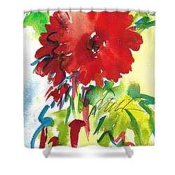 Gerberas Red, White, And Blue Shower Curtain