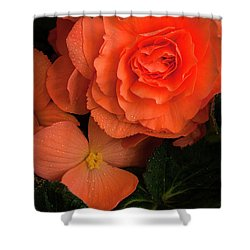 Red Giant Begonia Ruffle Form Shower Curtain