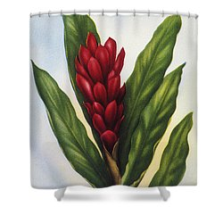 Red Ginger Shower Curtain by Hawaiian Legacy Archive - Printscapes