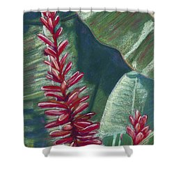 Red Ginger Shower Curtain by Patti Bruce - Printscapes