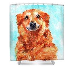 Red Golden Retriever Smile Shower Curtain
