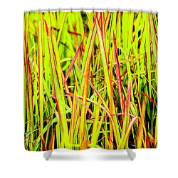 Red Green And Yellow Grass Shower Curtain