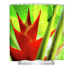 Red Heliconia Plant Shower Curtain