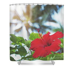 Shower Curtain featuring the photograph Red Hibiscus by Cindy Garber Iverson