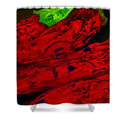 Red Hot Chili 2 Shower Curtain by Stephen Anderson