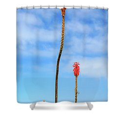 Shower Curtain featuring the photograph Red Hot Pokers by James Eddy