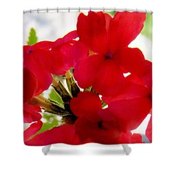Red In The Garden Shower Curtain