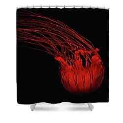 Red Jellyfish Shower Curtain by Denise Keegan Frawley