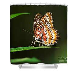 Red Lacewing Butterfly Shower Curtain by Louise Heusinkveld