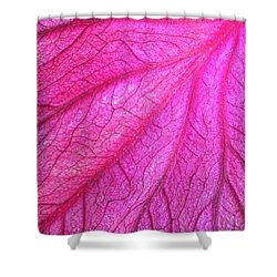 Red Leaf Arteries Shower Curtain