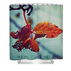 Shower Curtain featuring the photograph Red Leaf by Artists With Autism Inc