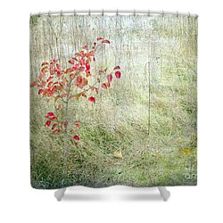 Red Leaves Amongst Grass Shower Curtain