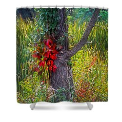 Red Leaves And Vines On Tree In Forest Of Reeds Shower Curtain