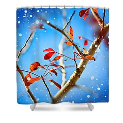 Red Leaves On Blue Background Shower Curtain