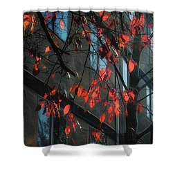 Shower Curtain featuring the photograph Red Leaves by Yulia Kazansky