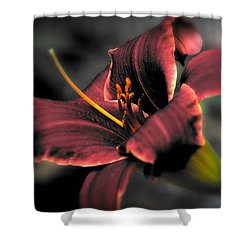 Red Lilly2 Shower Curtain
