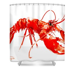 Red Lobster Shower Curtain