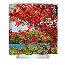Shower Curtain featuring the photograph Red Maple On Lake Shore by Elena Elisseeva