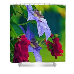 Red Meets Lavender Shower Curtain