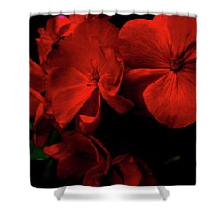 Red  Midnight Magic Flowers Shower Curtain