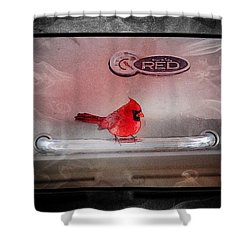 Red On Red Shower Curtain by Ericamaxine Price