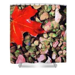 Red On The Rocks Shower Curtain by Jeffrey Kolker