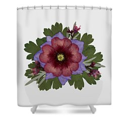 Red Open Faced Potentilla Pressed Flower Arrangement Shower Curtain