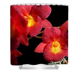 Red Orchids Shower Curtain by Merton Allen