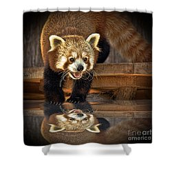 Red Panda Altered Version Shower Curtain by Jim Fitzpatrick