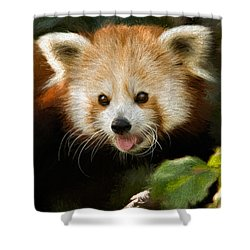 Red Panda Shower Curtain by Lana Trussell