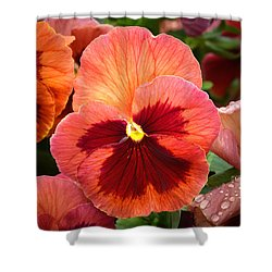 Red Pansy. Shower Curtain