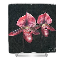 Red Paphiopedilums Shower Curtain