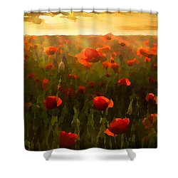 Red Poppies In The Sun Shower Curtain