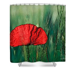 Shower Curtain featuring the photograph Red Poppy Flower by Jean Bernard Roussilhe