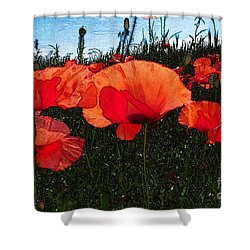 Shower Curtain featuring the photograph Red Poppy Flowers In Grassland by Jean Bernard Roussilhe