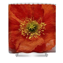 Red Poppy Shower Curtain by Linda Woods