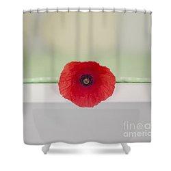 Red Poppy On Windowsill Shower Curtain