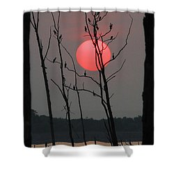Red Rise Cormorants Shower Curtain