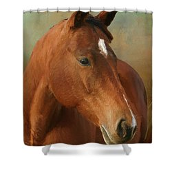 Red River - Painted Shower Curtain