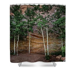 Red Rock Wall Shower Curtain by Mary Angelini
