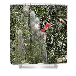 What A Rude Cactus Shower Curtain