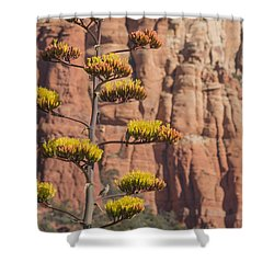 Red Rocks And Century Plant Shower Curtain
